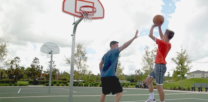 Sports Court element